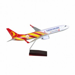 Tk Collection B737/800 1/100 GS Model Plane