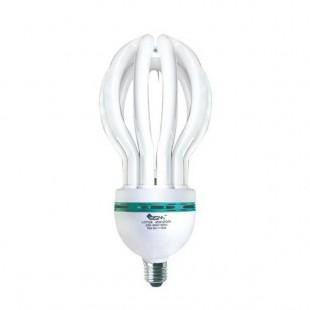 BSM Lotus Energy Light (Screw) 45 Watt